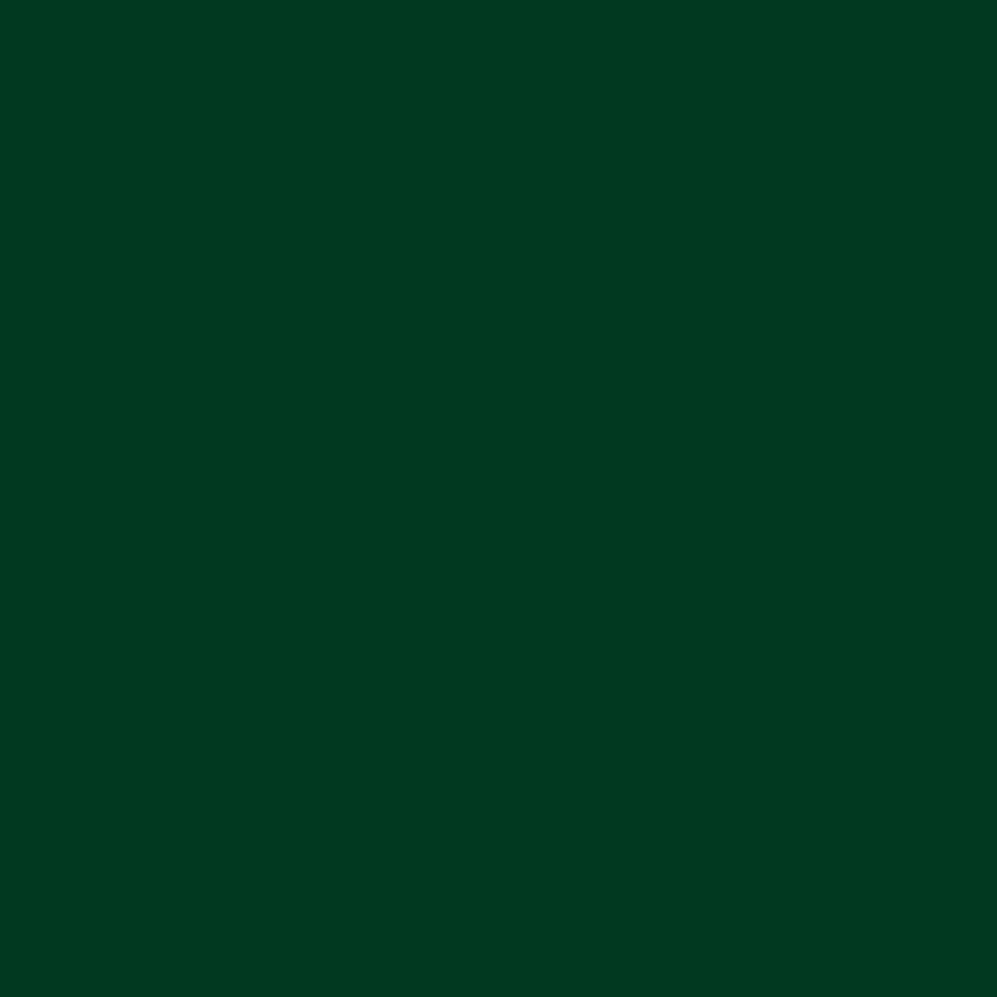 kh decklack, alkydharz lackfarbe, ral 6009 tannengrün glänzend, 6