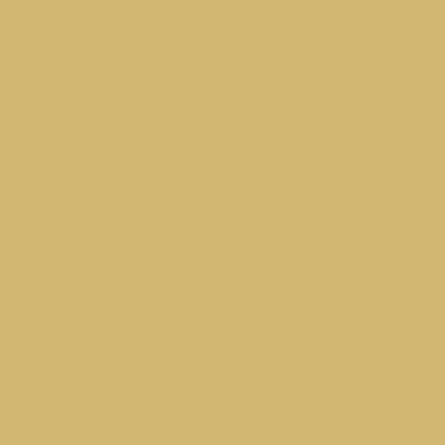 tarnfarbe sandgelb ral 1002 matt natolack 6 kg gebinde tarnl. Black Bedroom Furniture Sets. Home Design Ideas